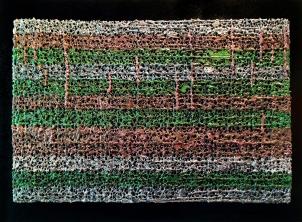 "Lace fabric, resin, acrylic on birch panel │24 x 36 x 1/2"" │2013"